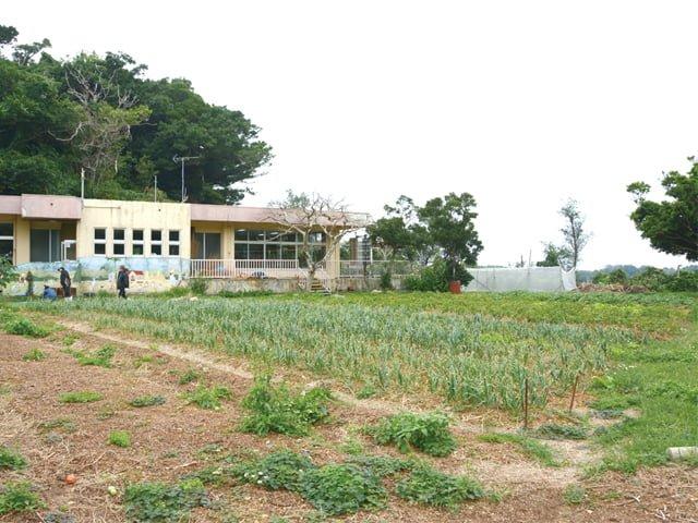 屋外での農作業の様子